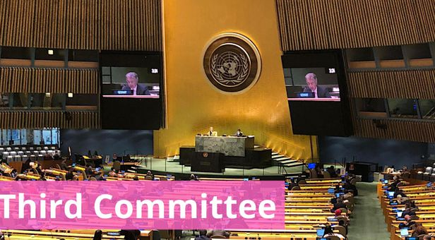 북한 인권 결의안을 채택하는 유엔 총회 산하 제3위원회 /UN 독일대표부 트위터 캡처