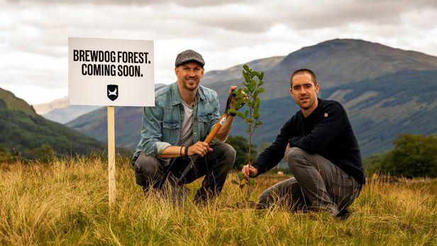 탄소 중립 맥주를 만들겠다며 나무를 심는 두 창업자. 제임스(왼쪽)과 마틴.  /브루독