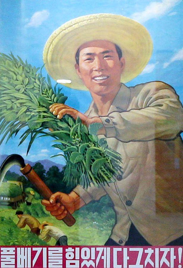 북한의 농업 진흥 포스터./조선일보DB