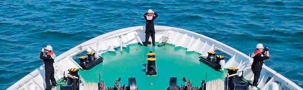 해양경찰청이 북에 피살된 해양수산부 공무원의 시신을 찾는 작업을 벌이는 모습. 청와대와 군이 해경에 이 공무원의 북 나포 사실을 알리지 않는 바람에 해경은 70시간 동안 엉뚱한 곳에서 실종자 수색 작업을 벌였다.